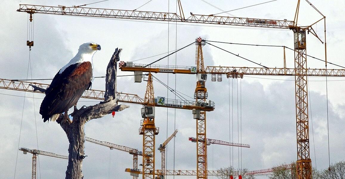 Bauleitung / Bauüberwachung